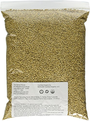 - The Sprout House Whole Barley Seeds for Barley Grass Juice Organic Sprouting Seeds 5 Pounds Resealable Stand up Pouch Used for Malt for Beer Brewing Malting