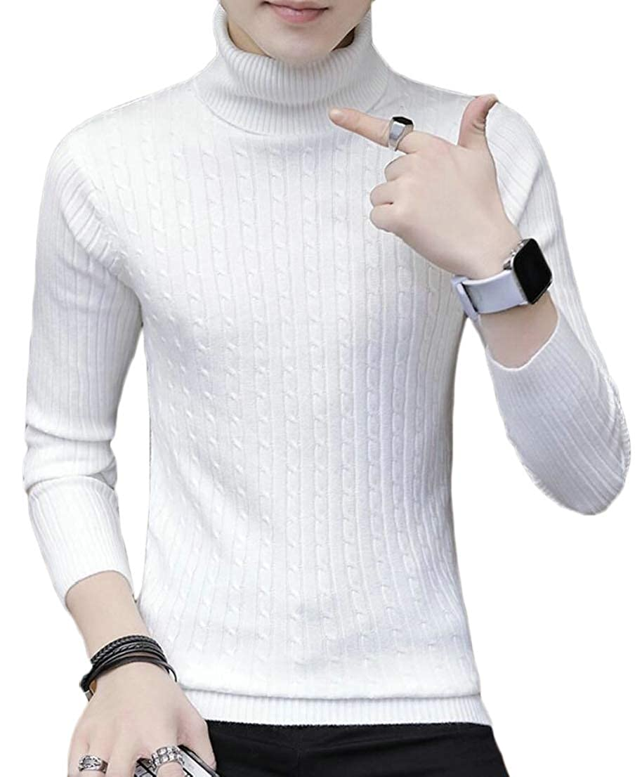 Generic Mens Turtleneck Leisure Solid Knitted Knitwear Slim Pullover Sweaters