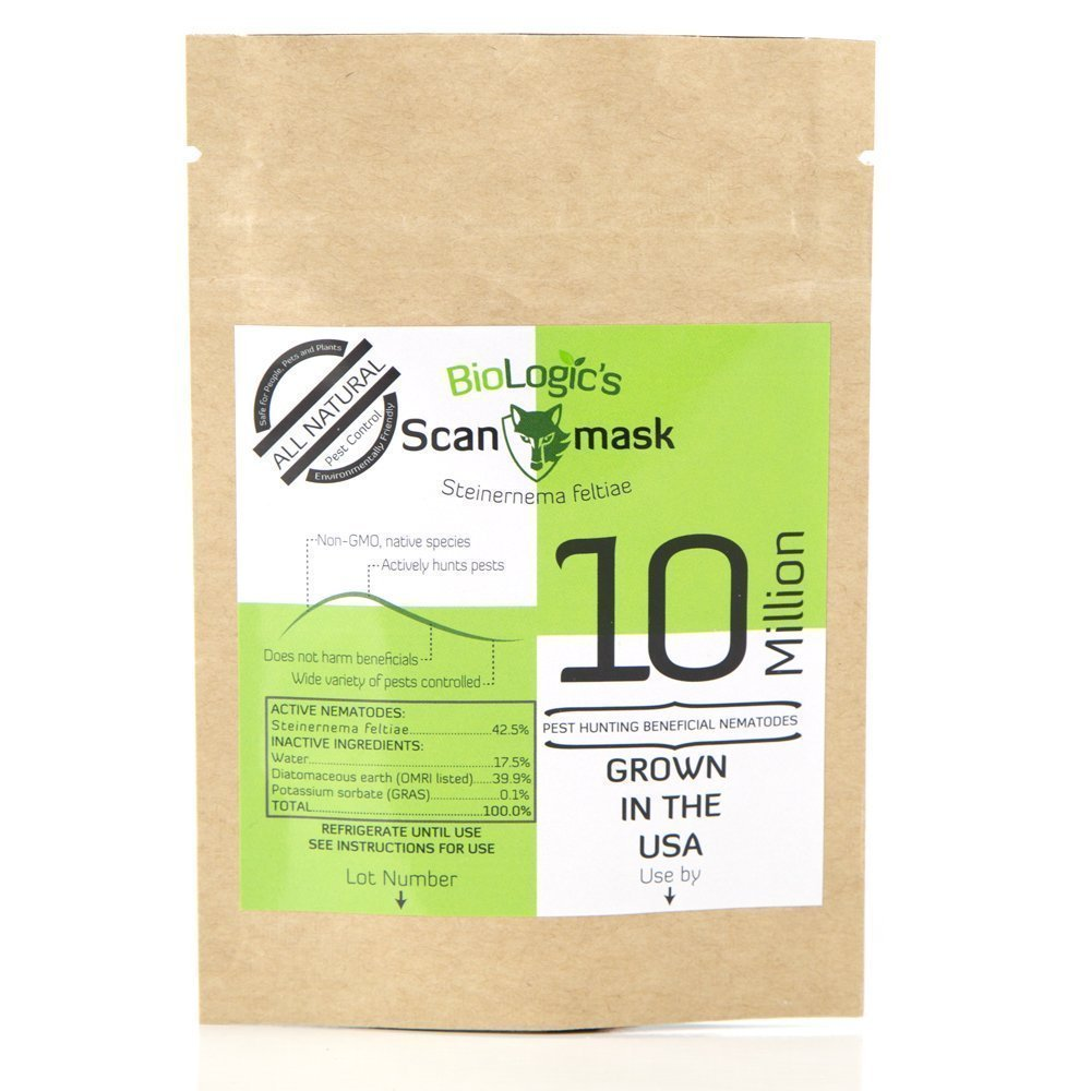 BioLogic Scanmask Beneficial Nematodes, 10 Million Steinernema feltiae (Sf) Nematodes for Natural Insect Pest Control