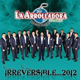 Irreversible 2012