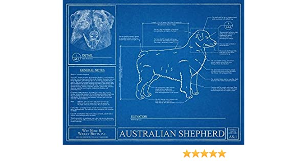 Amazon australian shepherd blueprint handmade malvernweather Images