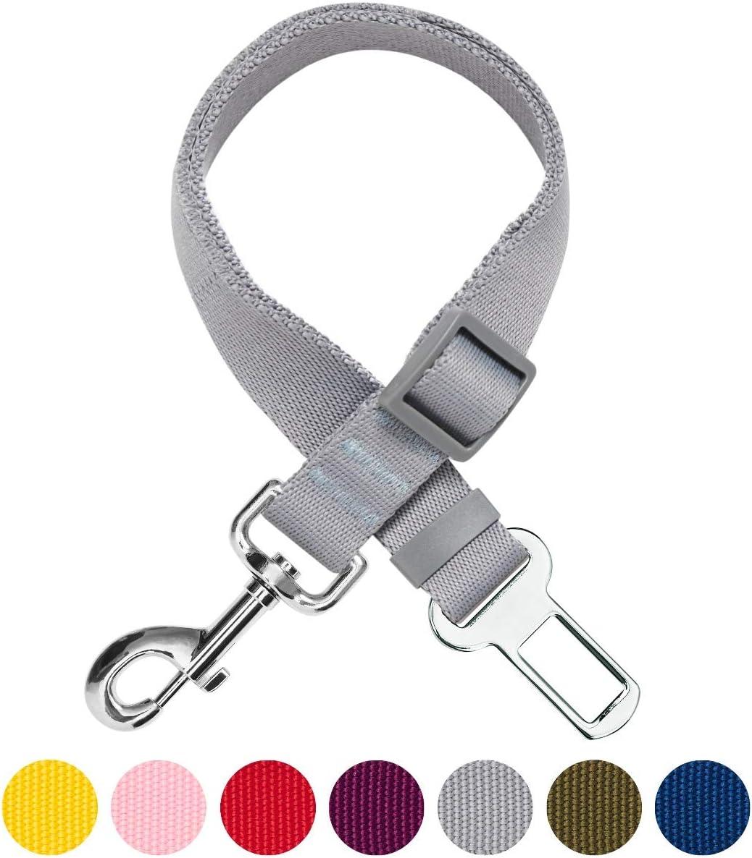 UMI Essential Laisse de s/écurit/é r/églable Robuste pour Chien Violet pour Voiture et /à Utiliser avec Un Harnais
