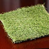Factory Direct Craft Decorative Artificial Grass Square for Crafting, Fairy Gardens, and Terrariums