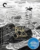 The Black Stallion (Blu-ray)