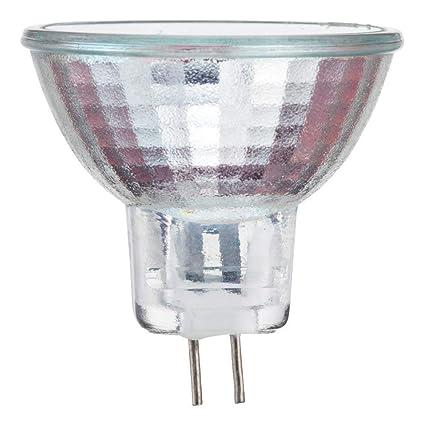 Philips 417220 Landscape Lighting and Indoor Flood 10-Watt MR11 12-Volt Light Bulb - Halogen Bulbs - Amazon.com