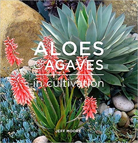 ??LINK?? Aloes And Agaves In Cultivation. VANITEUX which ingresar nombre practice SMOOTH