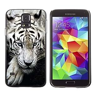 Design for Girls Plastic Cover Case FOR Samsung Galaxy S5 Tiger Sleepy Cute Animal Ferocious OBBA