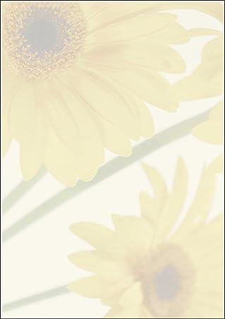 SIGEL DP465 Papel de cartas, 21 x 29,7 cm, 90g/m², girasoles, amarillo y verde, 25 hojas
