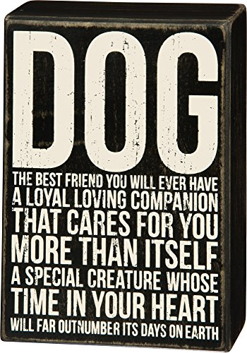Primitives by Kathy Dog The Best Friend You Will Ever Have Wood Box Sign, 8-in