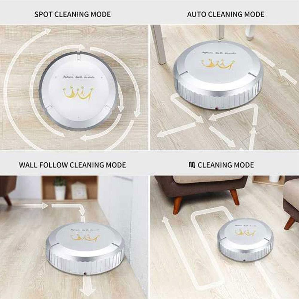 Amazon.com - Sweeping Robot Smart Vacuum Cleaner Dust Housekeeping ...