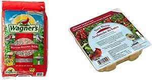 Wagner's 62008 Western Regional Blend Wild Bird Food, 20-Pound Bag & Heath Outdoor Products DD-22 Very Berry Suet Cake, 9.25 oz, Case of 16