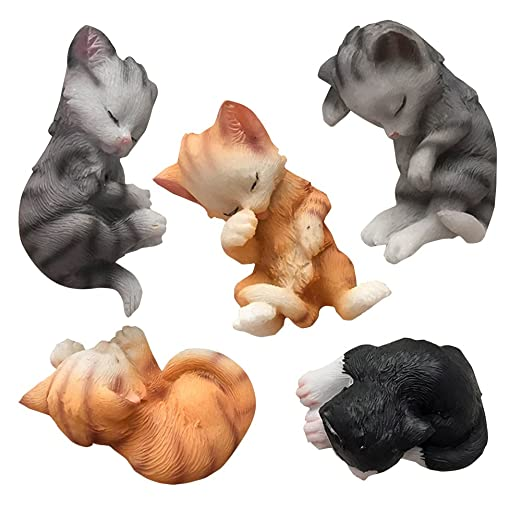 NM Lovely Sleeping Cat Deco imanes para nevera cajón: Amazon.es: Hogar
