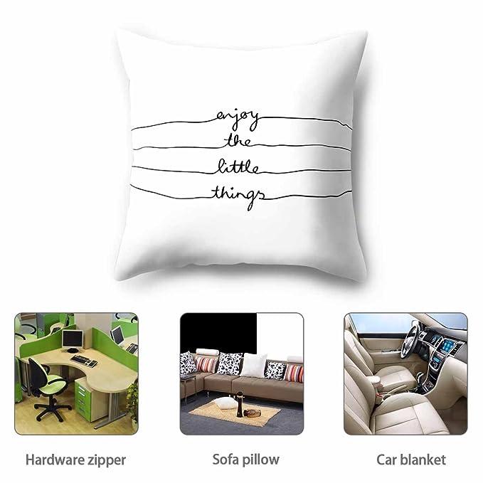 Fashion·LIFE Cojines, Almohadas, decoración de Dormitorio para sofás (45 cm x 45 cm): Amazon.es: Hogar