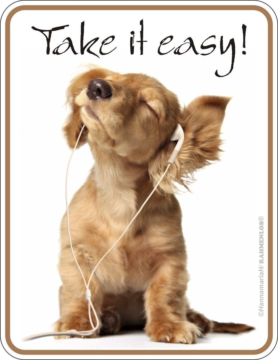 Take it easy Chapa 9/x 7/cm Rahmenlos/® Magn/ético Original