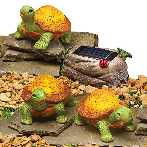 Turtle Outdoor String Lights