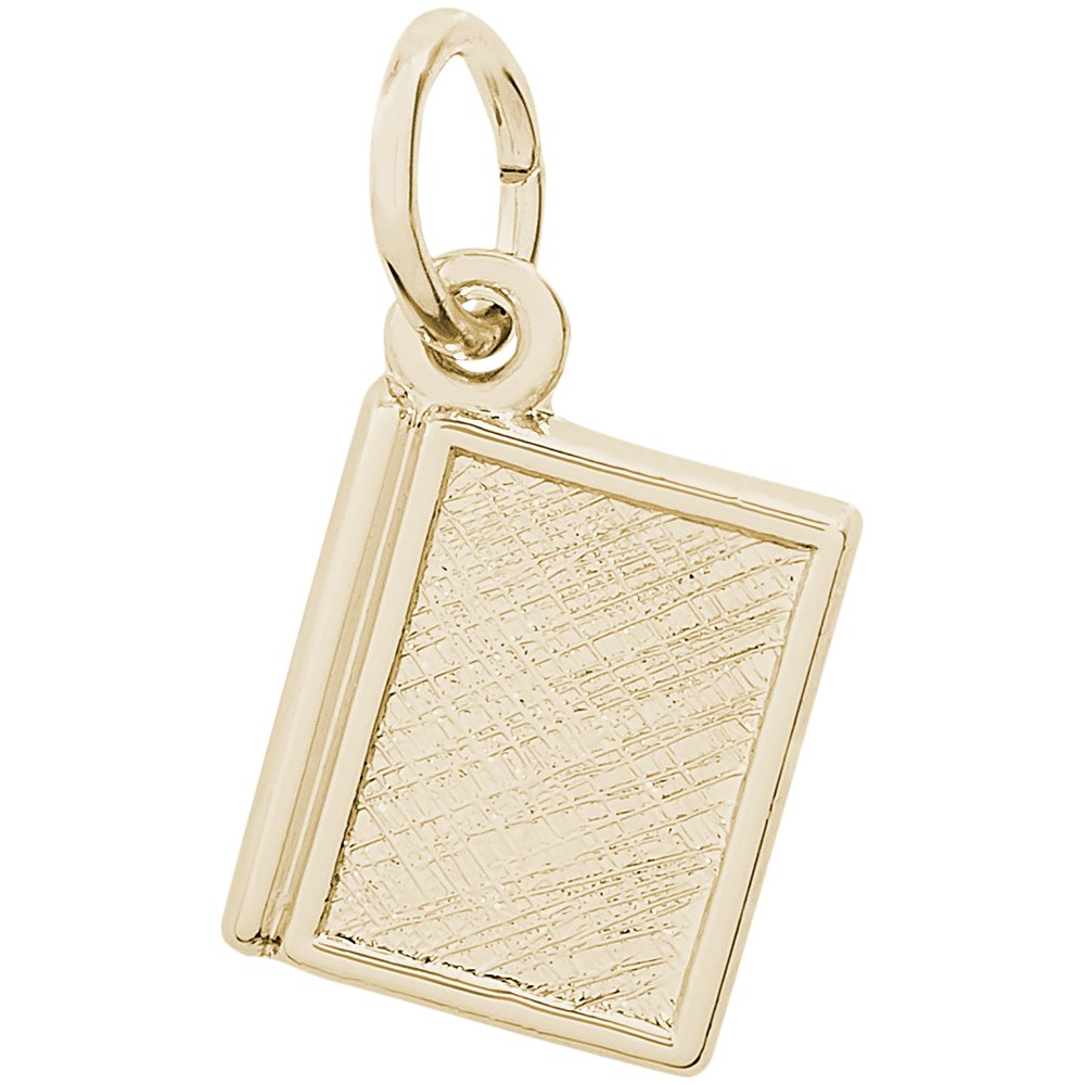 Rembrandt Charms Two-Tone Sterling Silver Closed Book Charm on a Sterling Silver 16 18 or 20 inch Rope Box or Curb Chain Necklace