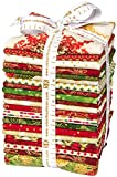 Winter's Grandeur 4 Holiday 20 Fat Quarter + 1 Panel Bundle Robert Kaufman Fabrics FQ-1062-21