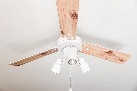 Ventilador de techo con iluminación y interruptor de cordón Cyrus blanco 107 cm: Amazon.es: Iluminación