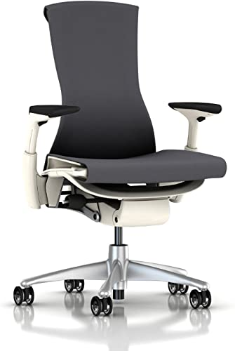 Herman Miller Embody Chair Rhythm