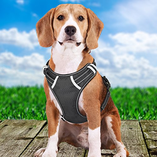 Dog Harness Large No Pull - Front Range Dog Harness Freedom, Harness Dog Adjustable Outdoor Pet and 3M Reflective Oxford Material Vest for Medium, Large Dogs by holuck