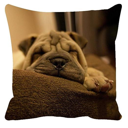 YIWAN Mascota Gato Perro Pop Art algodón sofá Almohada cojín ...