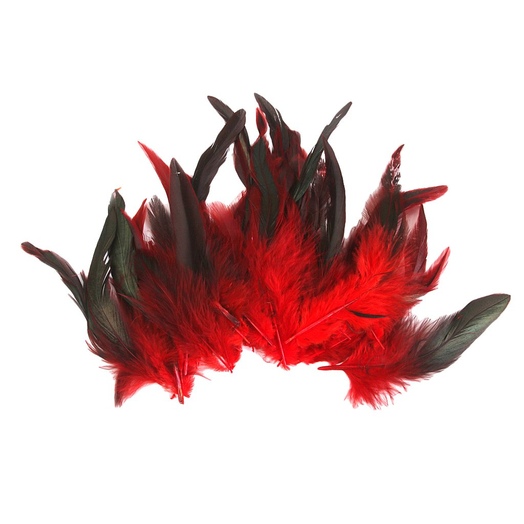 Dovewill Wholesale Novelty rooster feathers for Crafts Home decor Costume mask Making accessory Pack of 50