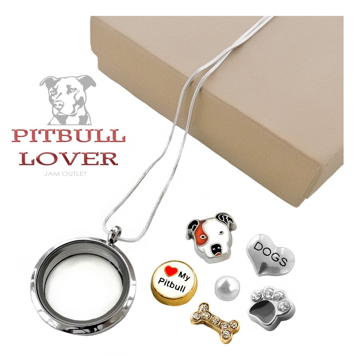 PIT BULL Living Memory Glass Locket Set, Pitbull Dog Floating Charms, Sterling Plated Necklace, Gift Box