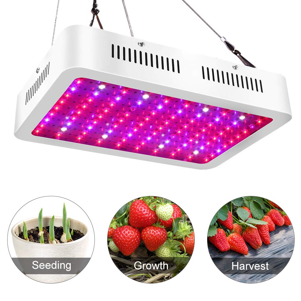 Big Sale!ASIGN LED Grow Light 1000w Dual Chip Full Spectrums UV IR LED for Indoor Plants Vegetable Flowers Growing Light Fixtures for Greenhouse Hydroponics by ASIGN