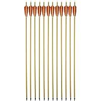 SHARROW Flechas de Carbono fletching con Puntas de 31 Pulgadas y 6 Puntas extraíbles para Practicar Tiro con Arco (Spine 500)