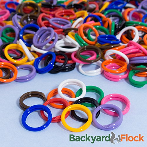 """50 Pack Spiral Chicken Poultry Leg Bands Rings - #11 11/16"""" size - Mixed Colors (50)"""
