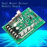 2016 High Efficiency TS-H620-10A Dual Motor Driver