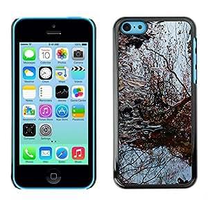 Print Motif Coque de protection Case Cover // F00003119 Padova Padua // Apple iPhone 5C