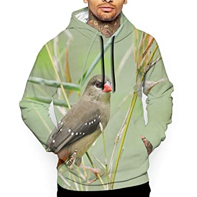 7af838c0736a Amazon.com  Red Plum Bird Men s Pullover Hoodie 3D Print  Clothing