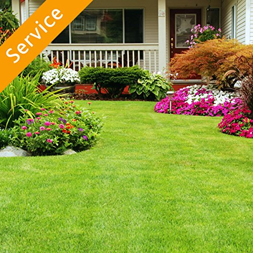 Lawn, Garden or Yard Maintenance - 2 Hours by Amazon Home Services