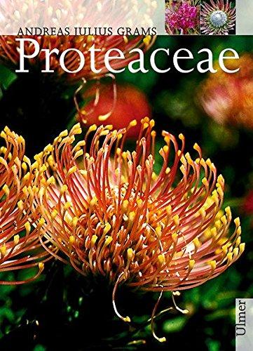 Proteaceae (Pflanzen-Monographien)