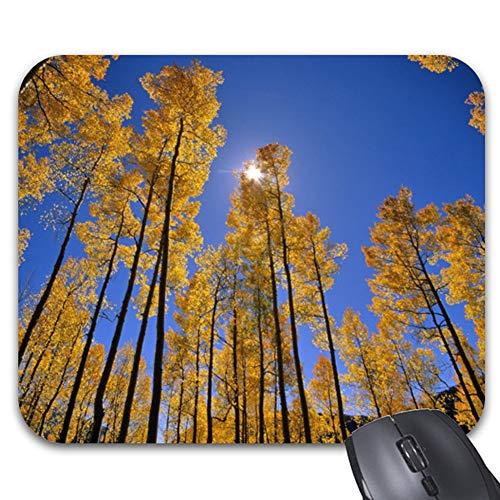 Aspen Grove in Autumn in The San Juan Range of Mouse Pad 9.25 x 7.5