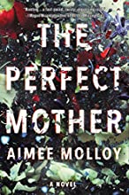 The Perfect Mother: A Novel