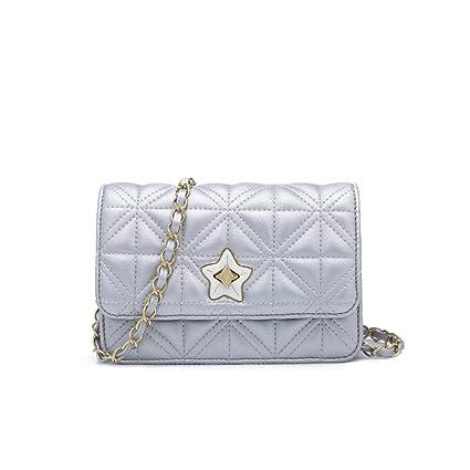 Bolso de Mujer Pequeño Bolso de Hombro de Cadena de Oro Mini Bolso de Noche de Embrague Clásico Bolso de Noche Clásico (Color : #1): Amazon.es: Hogar