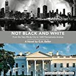 Not Black and White: From the Very Windy City to 1600 Pennsylvania Avenue | G. A. Beller