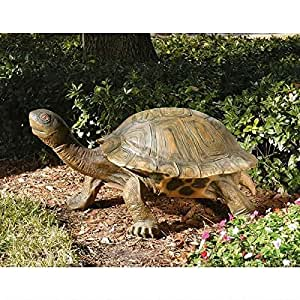 Design Toscano The Tranquil Tortoise Statue Size: Giant