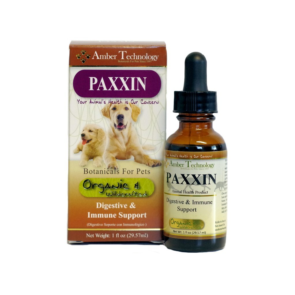 Amber Technology Paxxin Digestive & Immune Support for Dogs, 1 oz