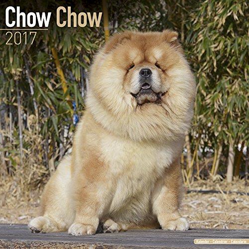 chow-chow-calendar-2017-dog-breed-calendar-wall-calendar-2016-2017