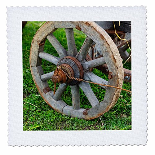 3dRose Alexis Photography - Objects - Grunge, Rusty Wooden Wheel of an Ancient cart on a Green Grass - 22x22 inch Quilt Square (qs_286614_9)