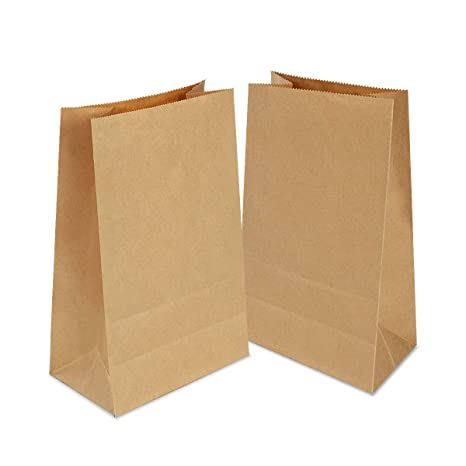 100 Piezas Bolsas Papel Kraft 21 x 12 x 7 cm, Bolsas Papel Regalo,Bolsas Ecologicas para Fruta, Bolsas para Envolver Regalos para Chuches Semillas ...