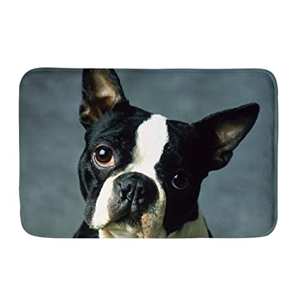 Amazon Com Instantarts Custom Waterproof Door Mat Animal Boston