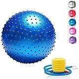 Amazon.com: SPRI Professional Xercise Workout Swiss Ball