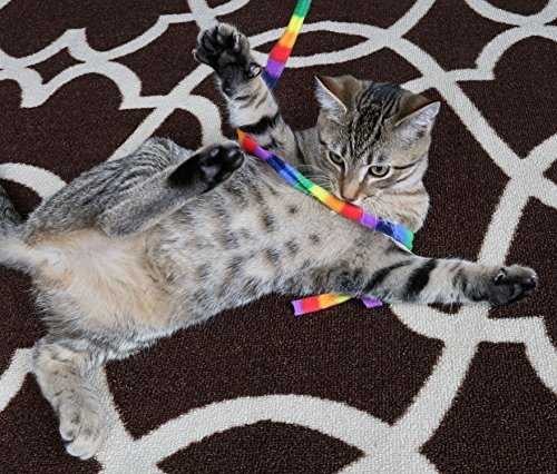 61sQZ4pPtcL - Cat Dancer Products Rainbow Cat Charmer