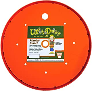 "product image for 13"" Ups-A-Daisy"