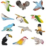 PIXNOR Bird Toys Plastic Model Bird Figures Kids Toy - 12 Pieces