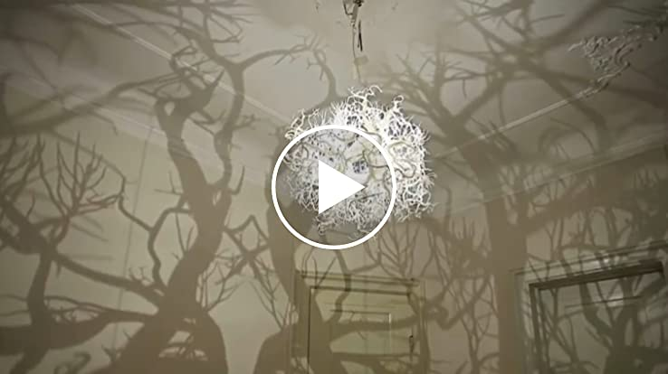 Chandelier Casts Tree Shadows On Wall